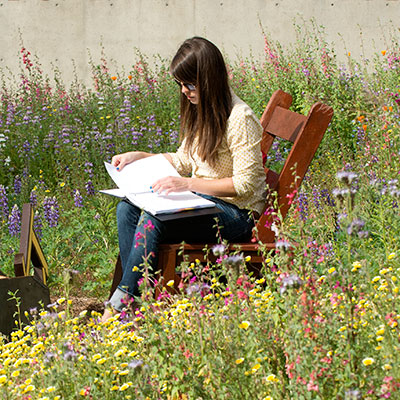 Student sitting in chair surrounded by wildflowers