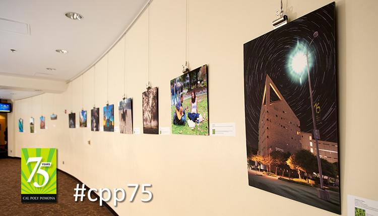 photo contest exhibit in the BSC