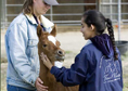 Students handling foal