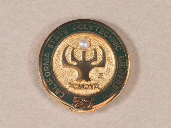 Service pin given to staff with 25 years of service