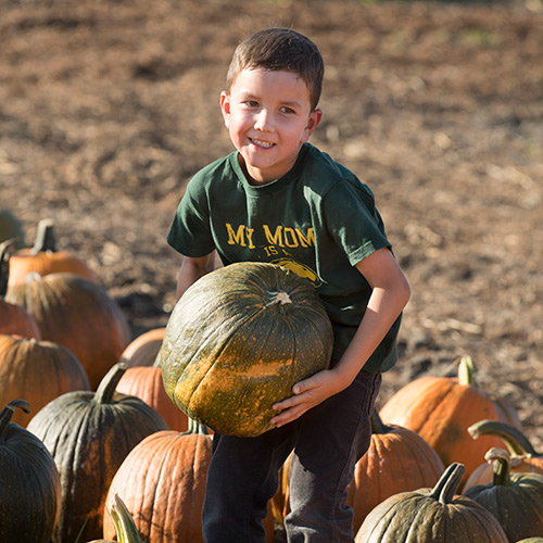 Young boy holding pumpkin