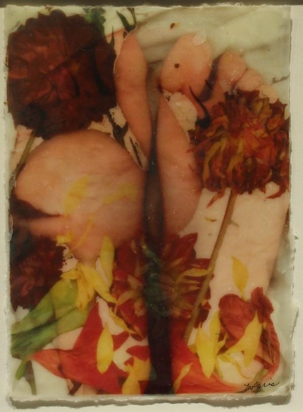 Linda M. Paris's Feet and Flamingos piece.  navigate down for further details