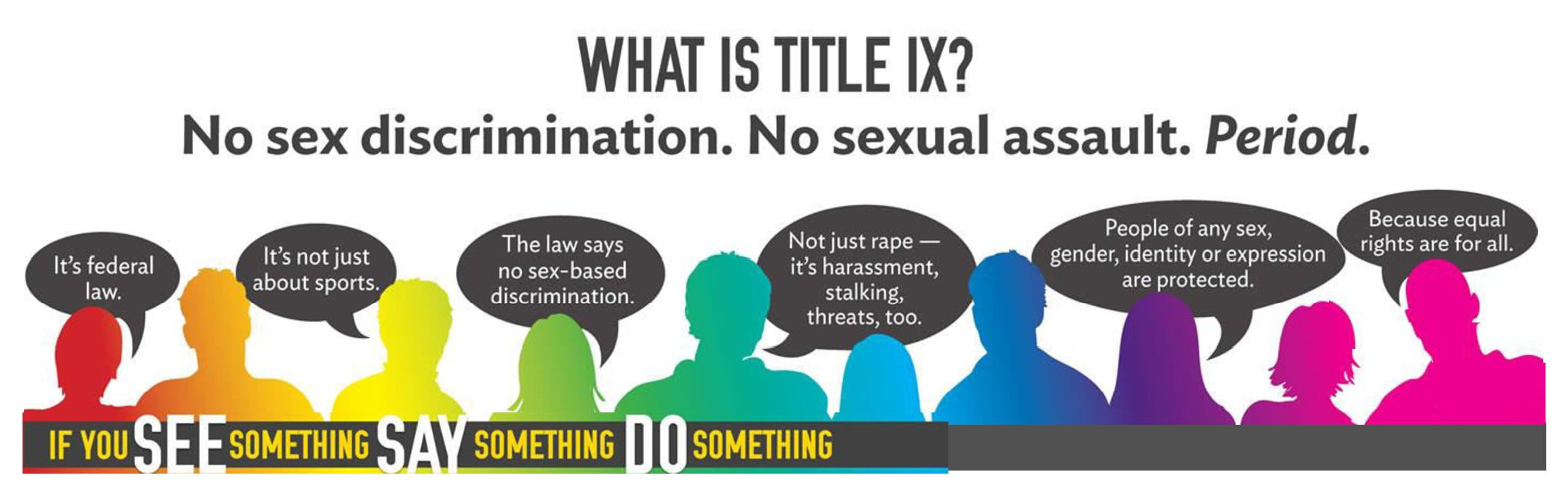 What is Title IX?