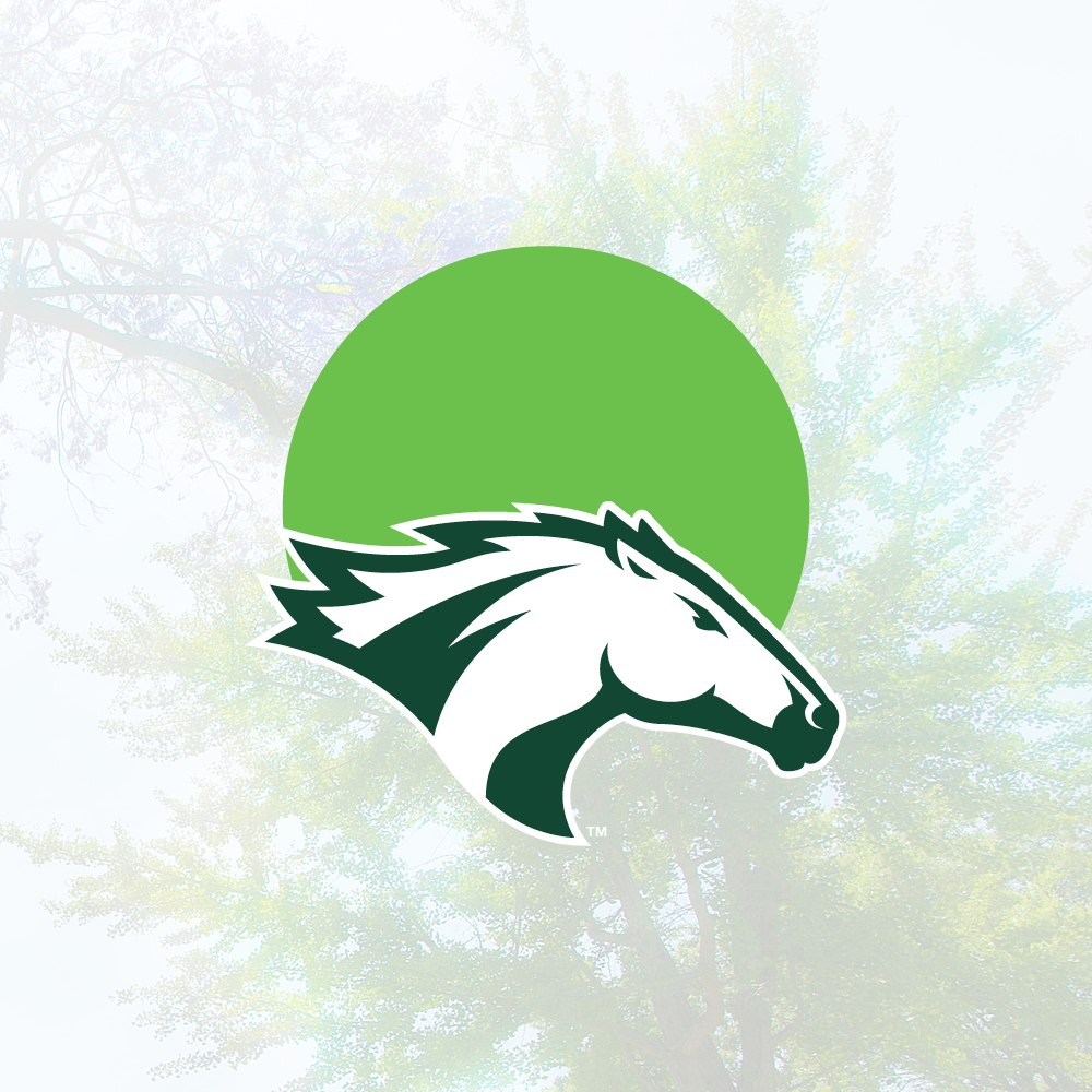A graphic with the Bronco Athletics logo