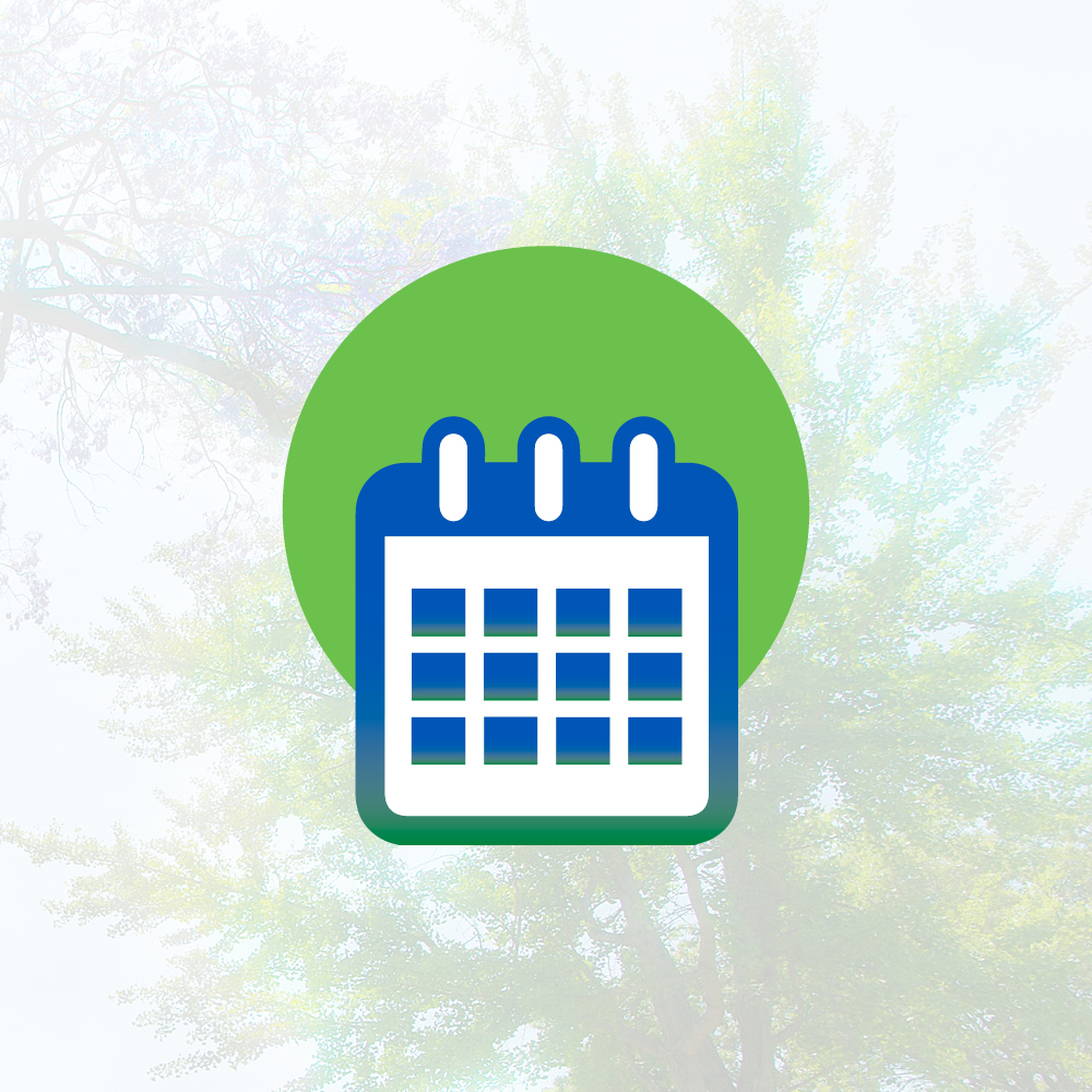 A graphic of a calendar