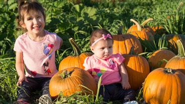 A toddler and an infant sit in the pumpkin patch