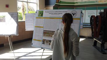 visitor examines poster board on research