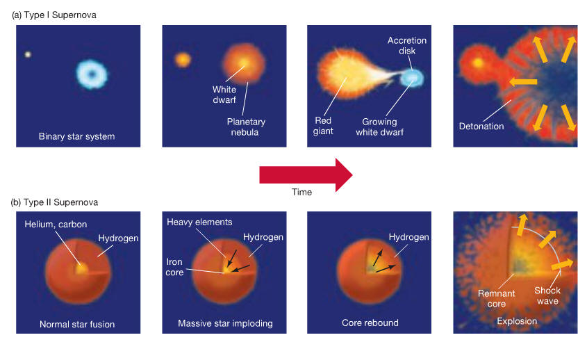 type ia supernova nucleosynthesis Background: type ia supernovae contribute significantly to the nucleosynthesis of many fe-group and intermediate-mass elements however, the robustness of.